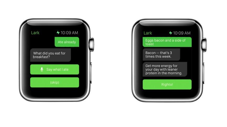 Lark Apple Watch app